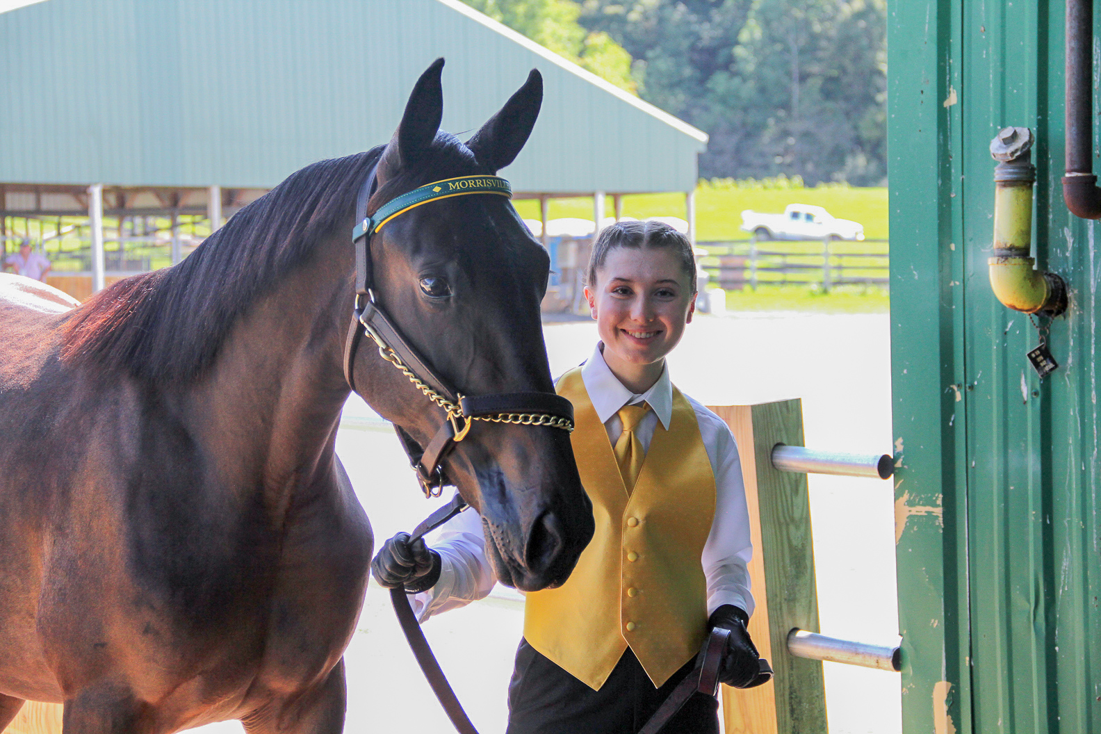SUNY Morrisville equine student, Christine Kevan, leads a yearling into the show ring during the college's 2018 Annual Yearling Sale.