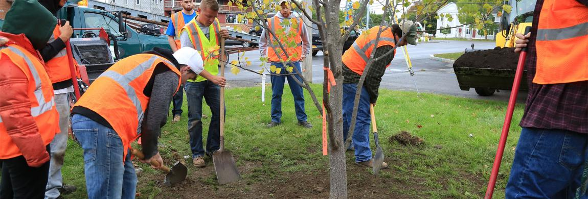 Students plant trees for arbor day