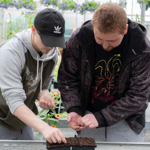 Students tend to the cannabis plants as part of their coursework.