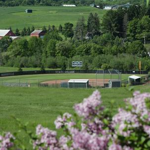 view of softball field surrounded by flowers